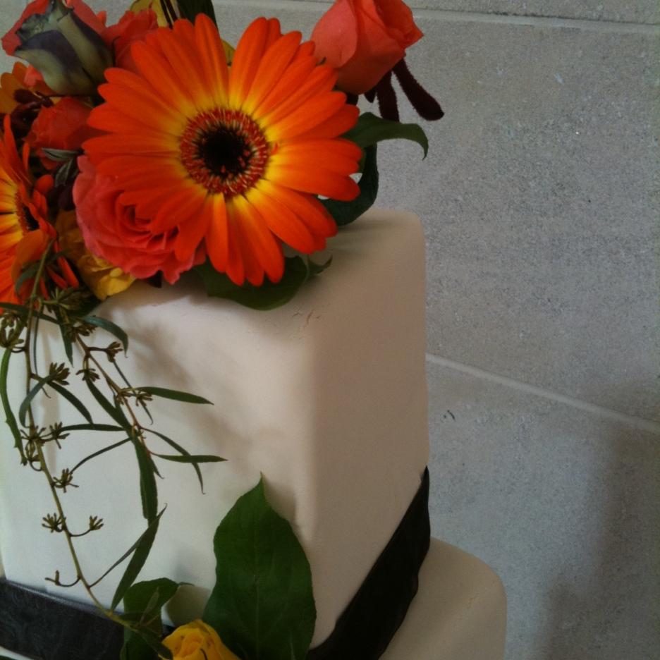 Closeup of fresh flowers