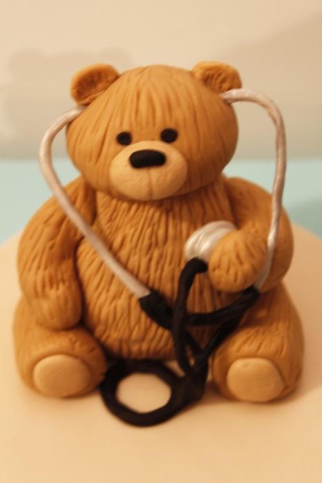 Tiny Survivors Bear Closeup